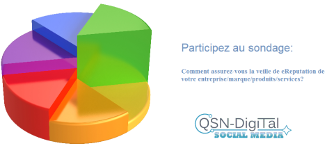 Sondage_eReputation_QSN-DigiTal