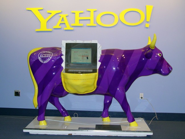 yahoo-vache_photo